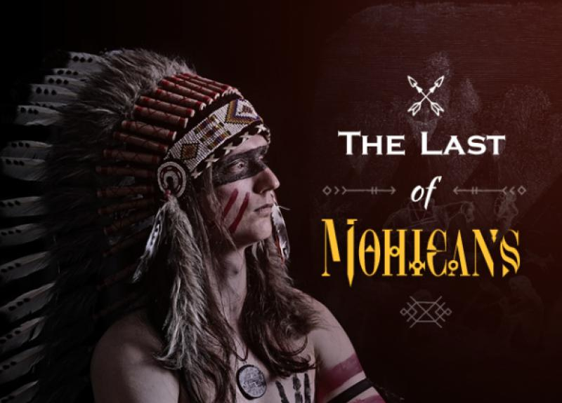 Book report on last of the mohicans steps writing effective essay